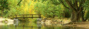 puente-sobre-rio2