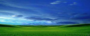 paisaje-verdew