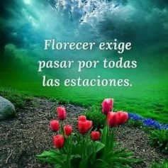 FB_IMG_1566213631876